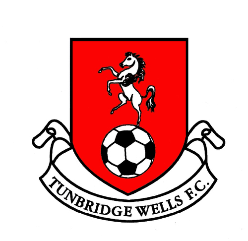 Wells badge